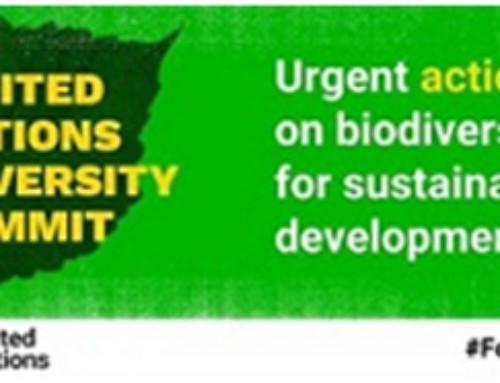 Samit Ujedinjenih nacija o biološkoj raznolikosti